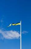 flag svensk Fotografering för Bildbyråer