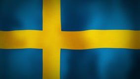 Flag Sweden stock footage