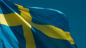 Flag of Sweden Fluttering in the Wind. The Big State Flag is illuminated by the sun and flutters epically in the wind against the blue sky. Slow Motion 120 fps stock video footage