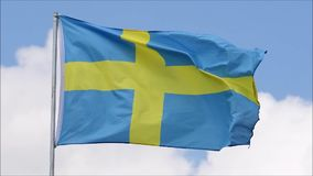 The flag of Sweden waves in the wind in slow motion. The flag of the Sweden waves in the wind in slow motion stock video
