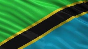 Flag of Tanzania - seamless loop vector illustration