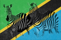 Flag of Tanzania with silhouette of two zebras Stock Photos