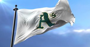 Flag of the team of the Oakland Athletics, american professional baseball - loop. Flag of the team of the Oakland Athletics, american professional baseball team stock footage