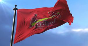 Flag of the team Saint Louis Cardinals, american professional baseball - loop. Flag of the team of Saint Louis Cardinals, american professional baseball team stock video footage