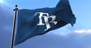 Flag of the team Tampa Bay Rays, american professional baseball, waving - loop. Flag of the team of the Tampa Bay Rays, american professional baseball team stock video