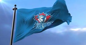 Flag of the team of Toronto Blue Jays, american professional baseball - loop. Flag of the team of Toronto Blue Jays, american professional baseball team, waving stock video