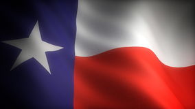 Flag of Texas stock video footage