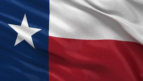 Flag of Texas seamless loop. Flag of Texas waving in the wind. Seamless loop with highly detailed fabric texture stock footage