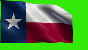 Flag of Texas, TX, Austin, Houston, December 29 1845, State of The United States of America, USA state - LOOP stock video
