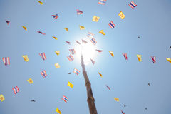 Flag to the pole Royalty Free Stock Photo