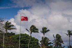 Flag of Tonga Stock Images
