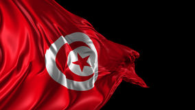 Flag of Tunisia. Beautiful   3d animation of Tunisia flag with alpha channel stock footage