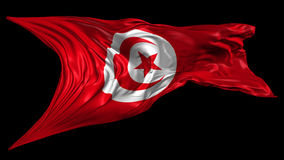 Flag of Tunisia. Beautiful   3d animation of Tunisia flag with alpha channel in 4k resolution stock footage