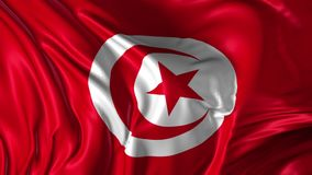 Flag of Tunisia. Beautiful   3d animation of Tunisia flag in loop mode stock footage