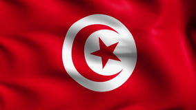 Flag of Tunisia (loop) stock video
