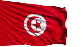 Flag of Tunisia (loop) stock video footage