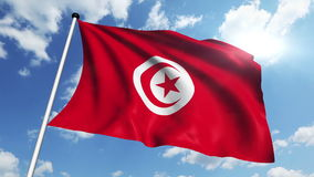 Flag of Tunisia (loop) stock footage