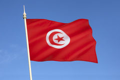 Flag of Tunisia - North Africa Royalty Free Stock Image