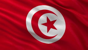 Flag of Tunisia - seamless loop. Flag of Tunisia gently waving in the wind. Seamless loop with high quality fabric material stock footage