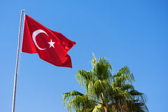 Flag of Turkey against the blue sky. National flag of Turkey and the green palm tree against the clear blue sky royalty free stock image
