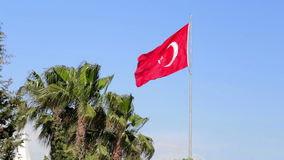 Flag of Turkey and palm trees. Beautiful summer view on blue sky and huge flag of Turkey. Footage is taken in Side stock footage