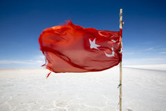 Flag from Turkey waving in the Salar of Uyuni, Bolivia Royalty Free Stock Images
