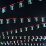 Flag of UAE Royalty Free Stock Images