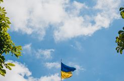 Flag of Ukraine on the background of a clear blue sky fluttering in the wind on the falstock on a sunny day. copy space.  stock photos