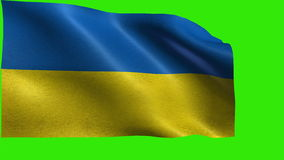 Flag of Ukraine, Ukrainian flag - LOOP. Beautiful 3d flag animation on green/blue screen in 4k format - seamless looped stock video