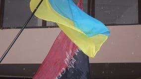 Flag Ukrainian radicals. DNEPROPETROVSK DECEMBER 03, 2016: Ukrainian flag and flag Ukrainian radicals Right Sector , December 03, 2016 in Dnepropetrovsk Ukraine stock footage