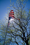 Flag Unfurled. An upward view of a US flag waving in the wind under the sun, in the shade of a tree Royalty Free Stock Photo