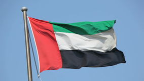 Flag of United Arab Emirates. Waving in the wind stock footage