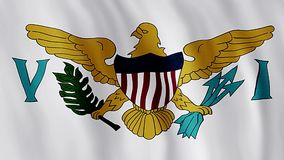 Flag Of The United States Virgin Islands. National symbol stock video footage