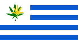 Flag of Uruguay with cannabis leaf Stock Photos