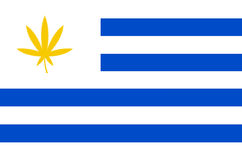 Flag of Uruguay with cannabis leaf Stock Photography