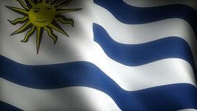 Flag of Uruguay. (Computer generated seamless movie stock video footage