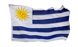 Flag of Uruguay - isolated Stock Photo
