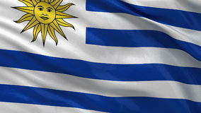 Flag of Uruguay - seamless loop. Flag of Uruguay waving in the wind. Seamless loop with high quality fabric material stock video footage