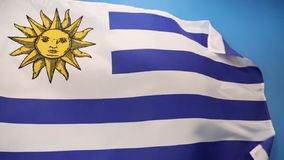 Flag of Uruguay - South America stock footage