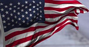 Flag of USA stock video