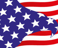 Flag of USA. Royalty Free Stock Image