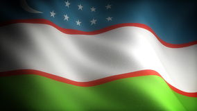 Flag of Uzbekistan. (seamless footage stock video