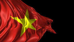 Flag of Vietnam stock video