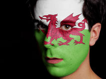 Flag of Wales. Painted on a Face of a Young Man stock images