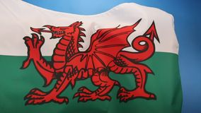 Flag of Wales - United Kingdom. The flag of Wales in the United Kingdom. The flag incorporates the Red Dragon of Cadwaladr, King of Gwynedd, along with the Tudor stock video footage