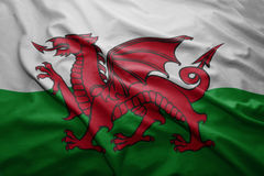 Flag of Wales Stock Image