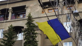 Flag wavers in the wind. Flag of ukraine wavers in the wind background stock video