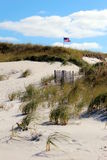 Flag waving in dunes. Vertical look at american flag wavering in the dunes of cape cod Royalty Free Stock Images
