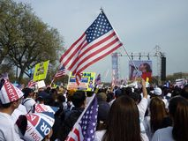 Flag Waving Protest at the Mall Stock Image