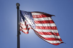 Flag waving in the wind. United States Flag waving in the wind with sun behind Royalty Free Stock Photos